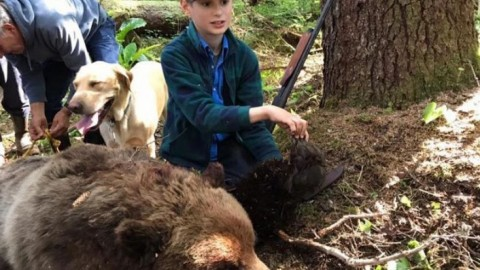 11-Year-Old Boy Downs Charging Brown Bear and Saves His Fishing Party