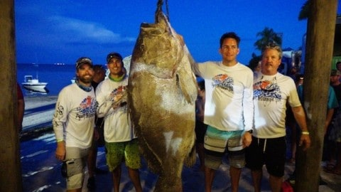 Firefighter May Have Speared the Largest Warsaw Grouper Ever