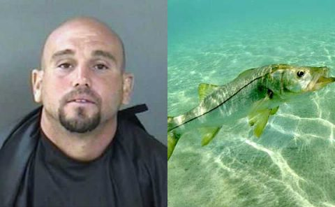 Man Revives Fish to Avoid Jail but Still Gets Arrested
