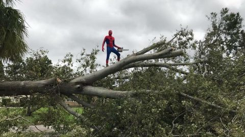 Friendly Neighborhood Chainsaw-Wielding Spider-Man Helps in Irma's Wake