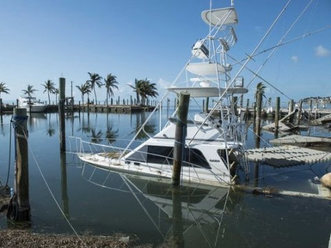 Despite Surviving Irma, Boat Captains in Florida Keys Fear They Won't Make It If Tourism Slows