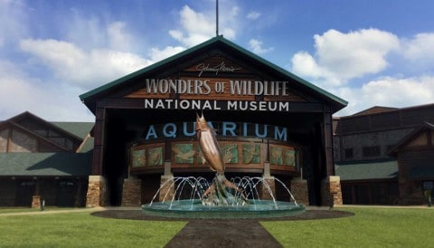 """Bass Pro Shops Founder Opens Wonders of Wildlife, the """"Disney World of the Outdoors"""""""