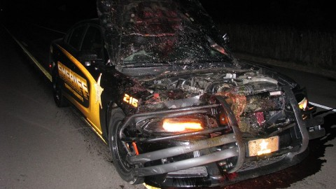 VIDEO: Deputy Hits Deer At 114 MPH While Responding To A Call