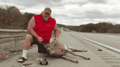 VIDEO: It's Not Your Typical Highway Deer Accident When 'The World's Strongest Redneck' Is Involved
