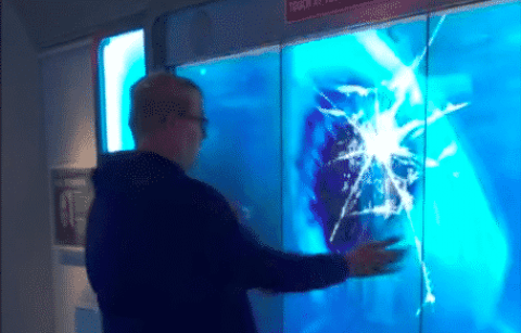 Watch This Dude Have The Best Reaction To Being Scared By A 'Shark' At A Museum