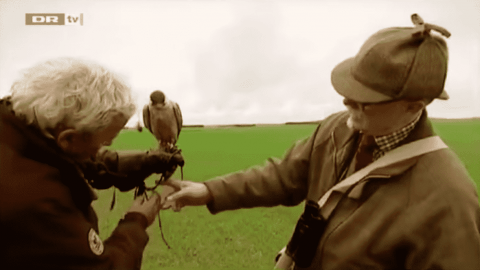 VIDEO: Falconer Watches His Bird Kamikaze Right Into A Semi Truck