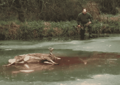 VIDEO: It Doesn't Any Colder Than This Deer Retrieval On A Frozen Pond