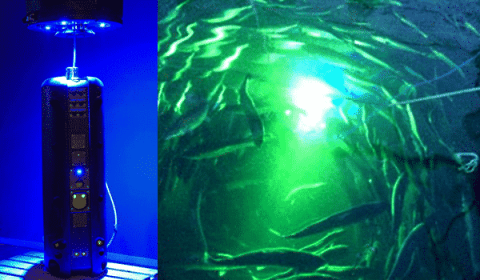 Underwater Drone Uses Lasers That Could Save Fish Farmers Over $1 Billion A Year