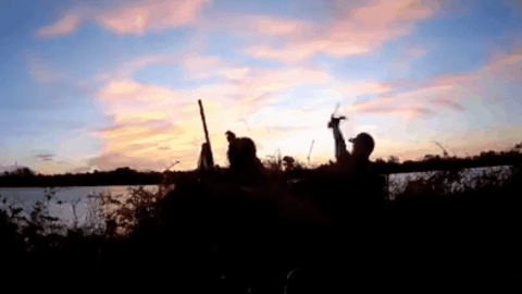 VIDEO: Duck Gets Snatched Up Mid-Flight By Quick-Handed Hunter
