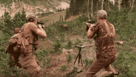 Angry Grizzly Bear Charges Hunters — What Would You Do?