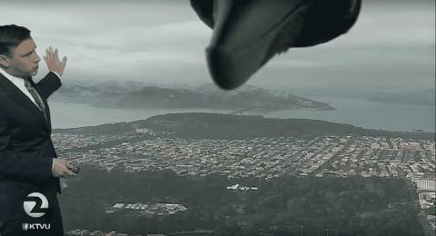 Bird Hilariously Photobombs Weatherman During Weather Report