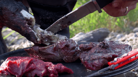 VIDEO: Steven Rinella Drops A Charging Moose And Turns It Into One Of The Best Meals He's Ever Had