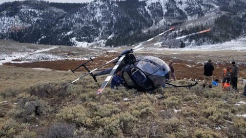 Jumping Elk Brings Down Helicopter