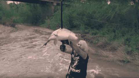 Game Of Fish: This Guy Catches Fish With A Katana!