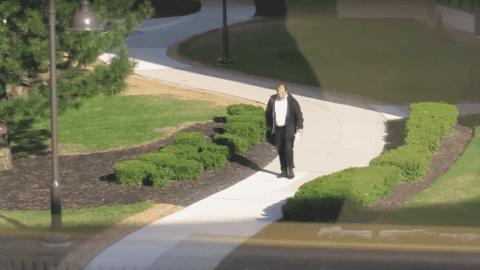 Watch Man vs. Goose In Ultimate Battle For The Sidewalk
