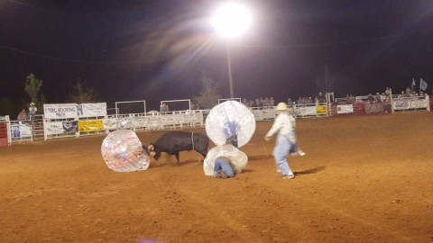 VIDEO: Bull Charges Human Rodeo Soccer Balls In Bizarre Sports Mashup