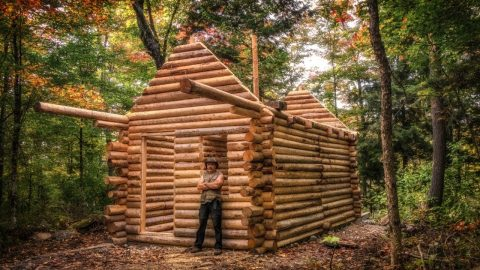 Watch One Man Build Incredible Log Cabin In The Forest From Start To Finish
