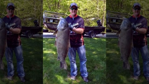 Fisherman Sets Record With Monster Black Buffalo Fish Weighing In At 47-Pounds