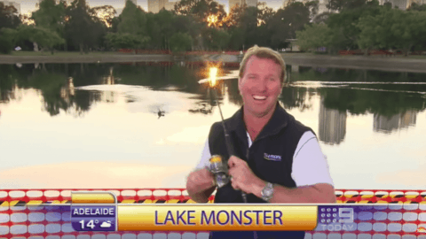 VIDEO: Angler Hooks Bird On Live TV As Fishing Segment Goes Wrong