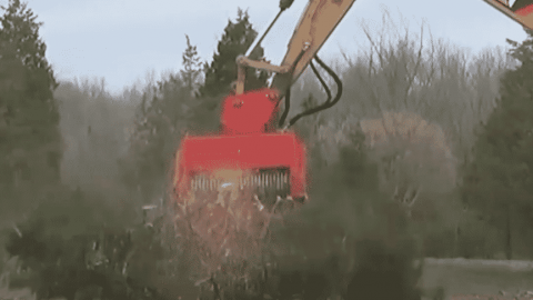 VIDEO: Trees Don't Stand A Chance With This Tree Eating Machine