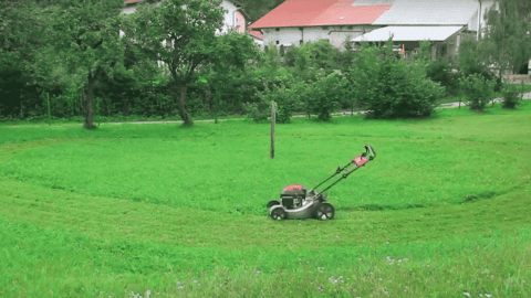 VIDEO: Mowing The Lawn Has Never Been So Easy