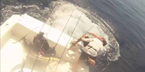 VIDEO: Anglers Bail Out Of Boat After Sailfish Jumps In