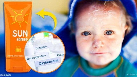 Study Finds 14 Most Dangerous Sunscreens For Kids