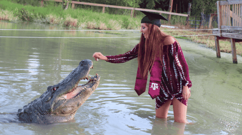 College Student Takes Graduation Pictures With 14-Foot Alligator