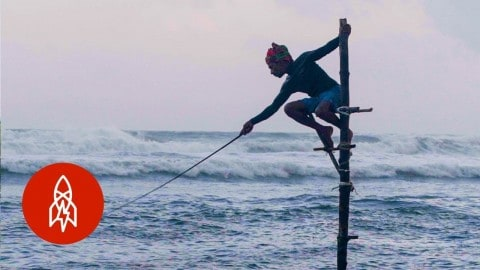 VIDEO: These Stilt Fishermen Are The Last Few Carrying On An Incredible Tradition
