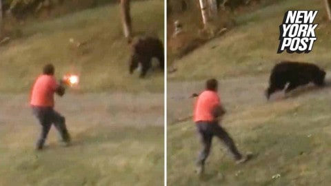 VIDEO: It'll Take A Lot More Than A Shotgun To Stop This Angry Charging Grizzly