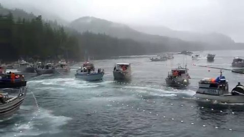 VIDEO: It's Every Boat For Itself And A Storm Of Nets When These Fishermen Take Off