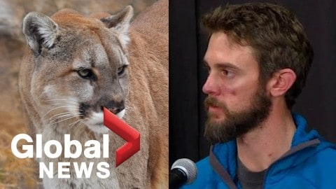 The Trail Runner Who Suffocated A Mountain Lion Reveals His Identity And Discusses What Happened