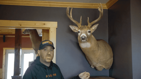 Deer Mounts Can Finally Be Hung In The Corner!