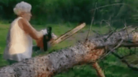 Close Call: Chainsaw Grandma Needs A Safety Course After A Tree Nearly Takes Her Head Off