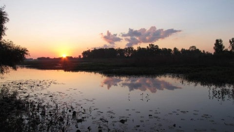 Trump Administration Planning 1.4 Million Acre Expansion Of Hunting And Fishing In Wildlife Refuges