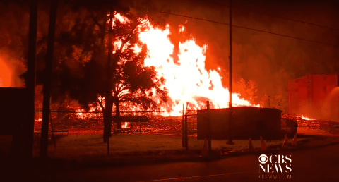 Whiskey Warehouse Fire Killed Thousands Of Fish